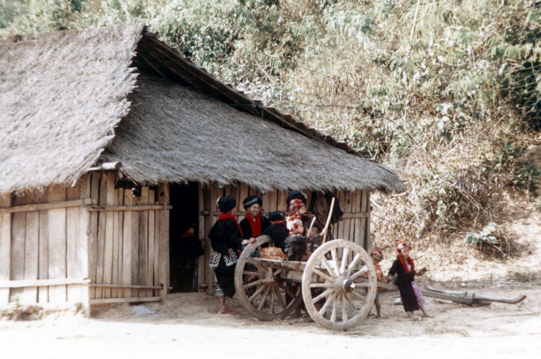 Yao (Iu Mien) village with ox cart in Houa Khong Province