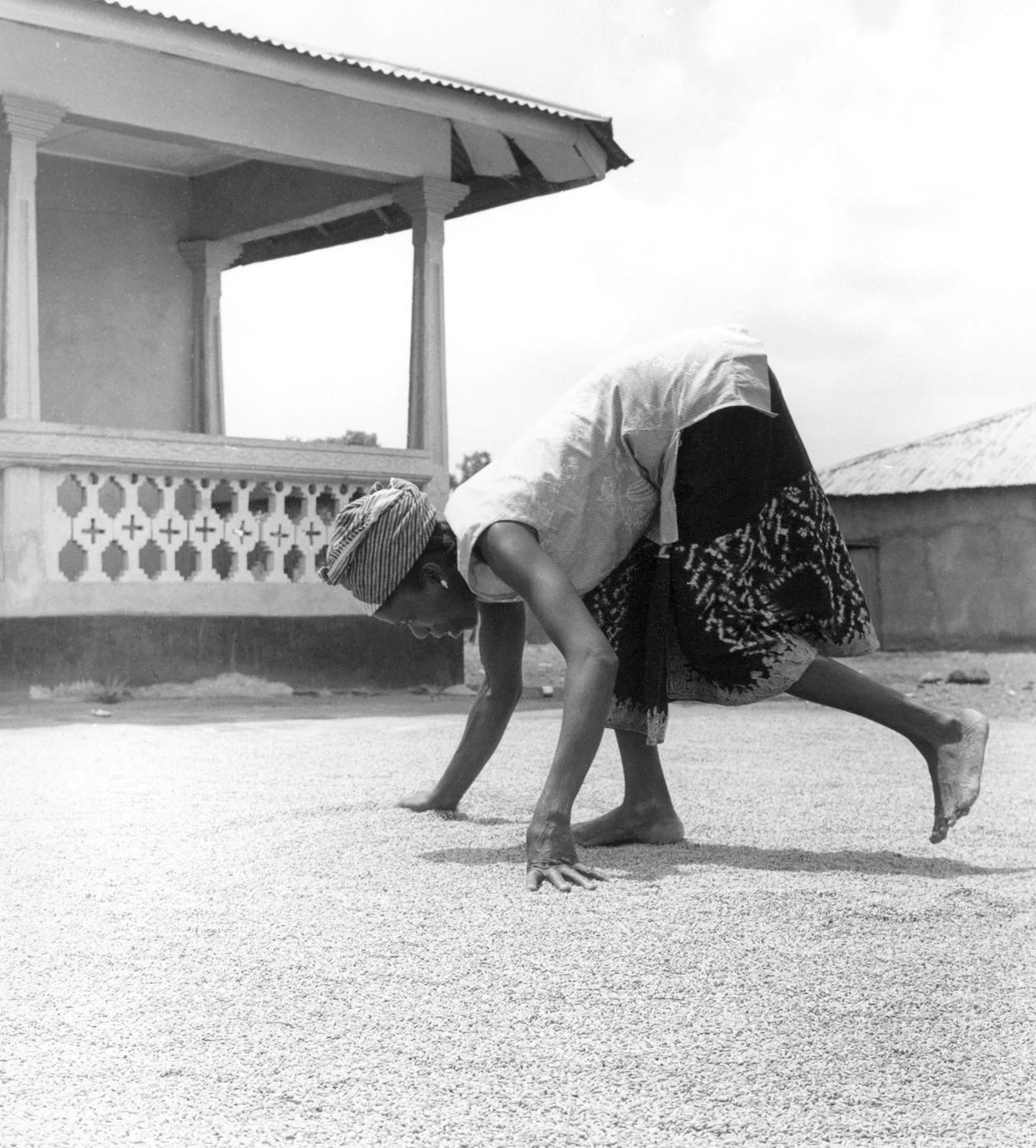 Woman Spreading Out Rice on the Ground