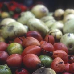 """""""Pepino"""" and """"tomate"""" fruits in market, Santo Domingo de los Colorados"""