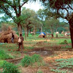 Temporary Refugee Settlement for Uduks