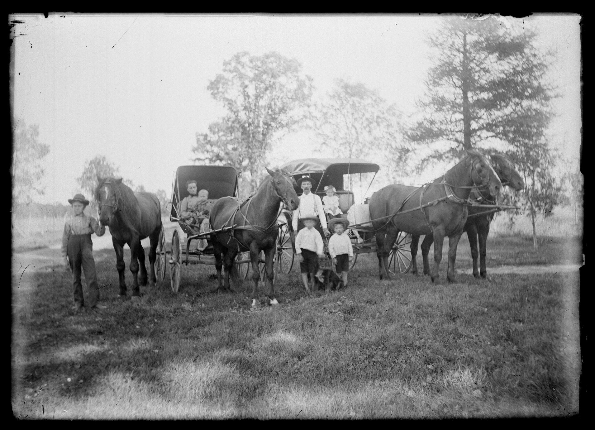 Horse drawn buggies and families
