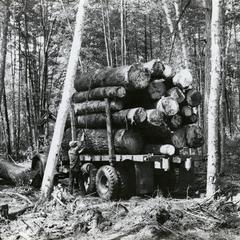 Logging operation