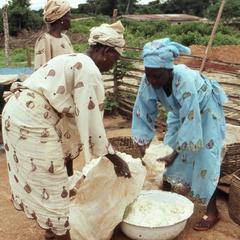 Women handling gari