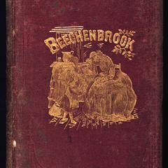 Beechenbrook : a rhyme of the war
