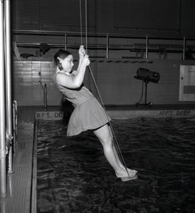 Female Golden Trident on swing