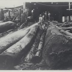 Lumber mill, Bataan, 1926