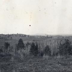 Morainic bottoms in Pine Valley
