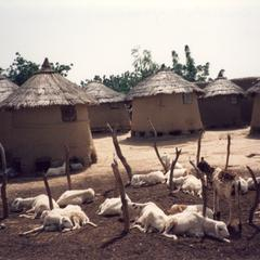 Goats and Granaries