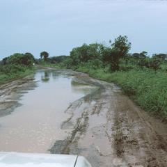 Dirt Road in Rainy Season