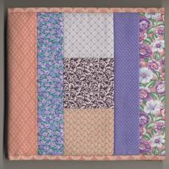 Praise basted in : a friendship quilt for Aunt Sallie