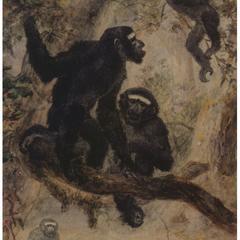 Lar Gibbon Print