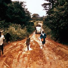Main Road From Macenta to N'zerekore