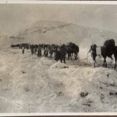 Die Übersteigung des Moscovul Winter 1916