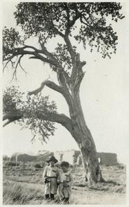 Starker and Luna as small boys, under large cottonwood, Bosque Ranch, New Mexico, October 1920
