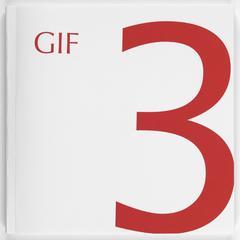 GIF 3