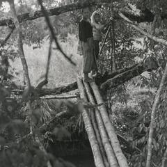 Foot bridge used to cross a stream in Attapu Province