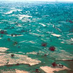Fields Close to Kano Shown During the Rainy Season