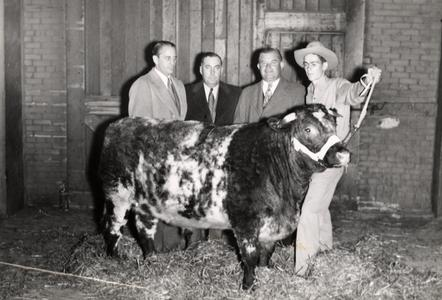 Junior Livestock Exposition's Grand Champion beef steer