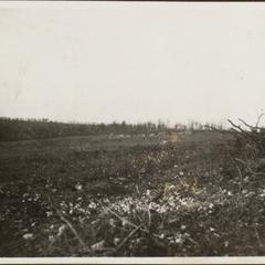 Rechts Feldartillerie vor Fort Duaumont