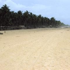 Beach at Badagry and trees