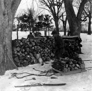 Aldo Leopold loading sled with firewood