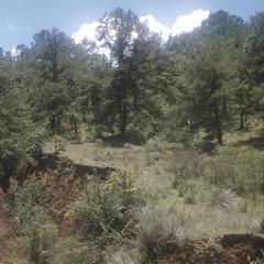 Erosion, just east of Quiroga