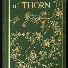 The twig of thorn : an Irish fairy play in two acts