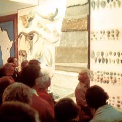Interior of Leakey Museum in Nairobi
