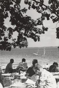 People overlooking sail boats
