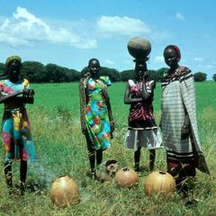 Women with Calabashes Posing in a Field