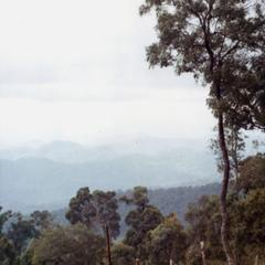 Mountain terrain in the vicinity of a Blue Hmong village in northern Thailand