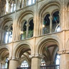 Peterborough north transept
