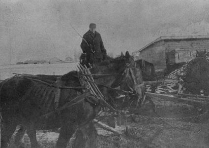 Sawing wood with horses furnishing power at Rosiere, Wisconsin