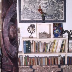 Folarin's bookshelf