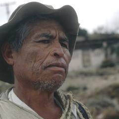 Laborer, Toluca