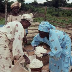 Women moving gari