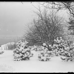 Lake Michigan from Yule yard - February