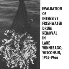 Evaluation of intensive freshwater drum removal in Lake Winnebago, Wisconsin, 1955-1966