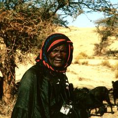 Nomadic Bella Woman Tending Goats