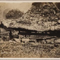 Native huts, Bontoc, P.I.
