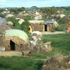 Overview of Jalalaqsi Refugee Camp