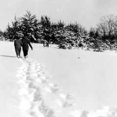 Couple walking toward pines on Sand Hill