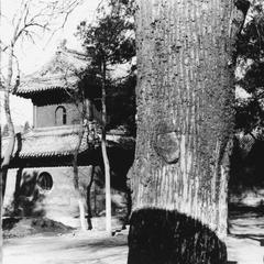 The drum pavilion of Fayuan Si (Dharma Origin Temple) 法緣寺.
