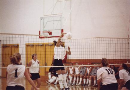 Volleyball player spikes ball over net