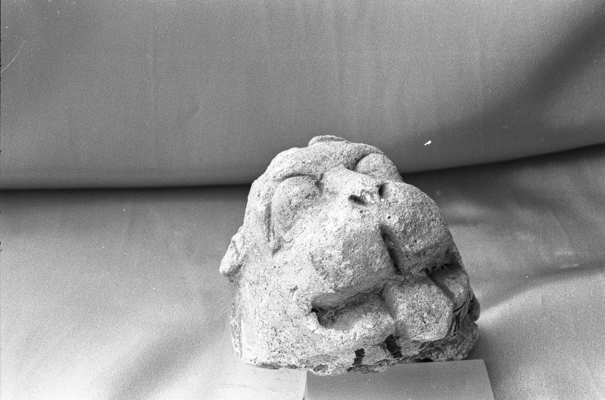NG017, Stucco Lion Head (1 of 3)