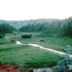 Valley along Gitega Road