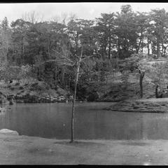 A part of park near Yaami