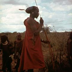 Turkana Man with Elaborate Hairstyle