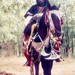 Man and Horse in Festive Dress for Sallah (Eid el Kabir) Celebration