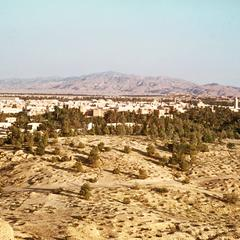 Gafsa with Oasis in Foreground